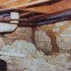 Termite Leads