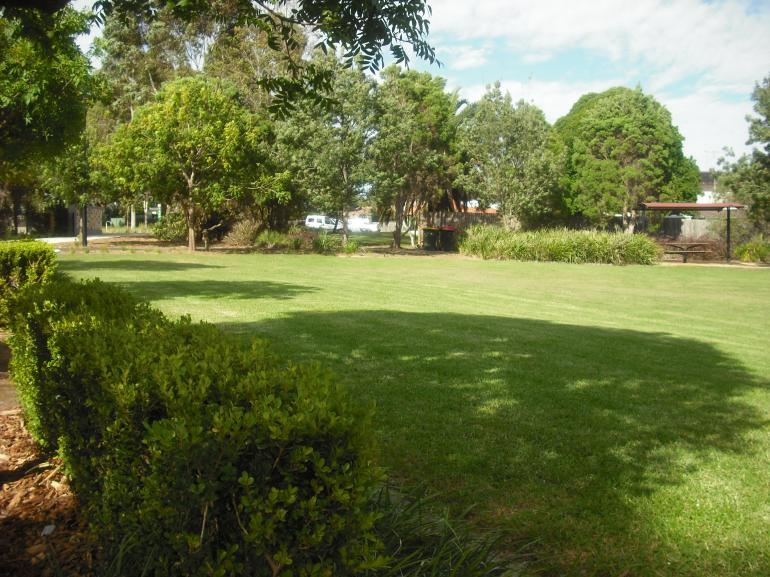 View Photo: Kikuyu looking its best in a park