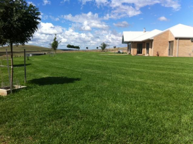View Photo: New established lawn on acres