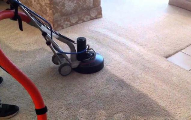 4 Reasons Why You Need To Clean Your Carpet Regularly