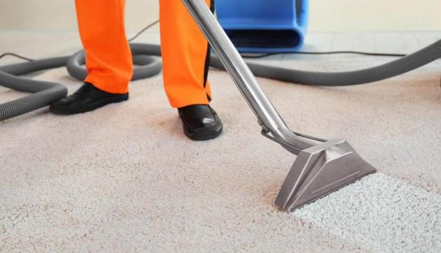 How To Clean a Carpet Naturally With Baking Soda and Vinegar?