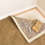 How to Remove Musty Smell From Your Carpet