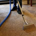 Read Article: Several Carpet Cleaning Process Experts Try to Get Rid of Stains
