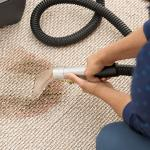 Some Common Mistakes You Should Avoid While Removing Stains From Carpet