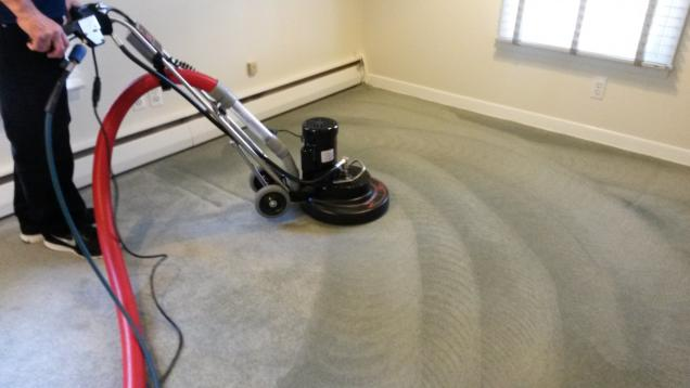 Read Article: The Process of Vacuum Carpet Cleaning