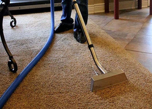Several Carpet Cleaning Process Experts Try to Get Rid of Stains