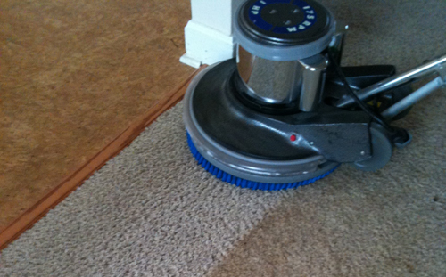 What is the Most Important Part of Carpet Cleaning?