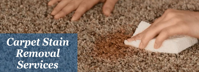 View Photo: Carpet Stain Services