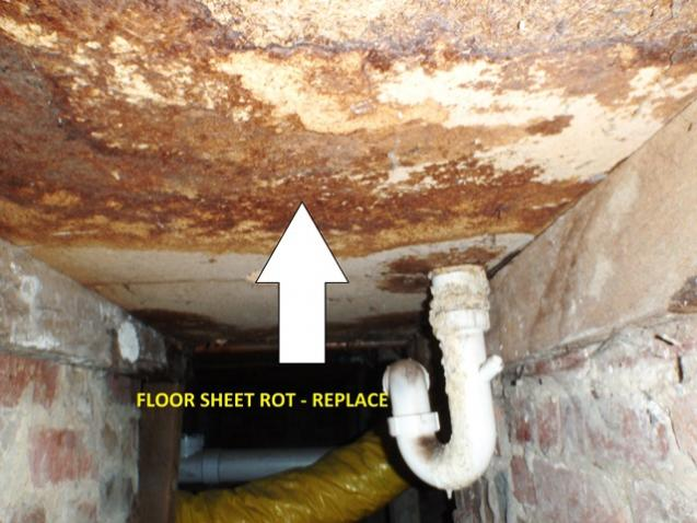 View Photo: Floor sheeting bathroom Leak