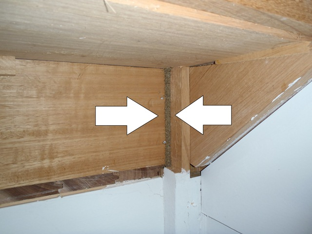 View Photo: Termite lead going up underside of stairs