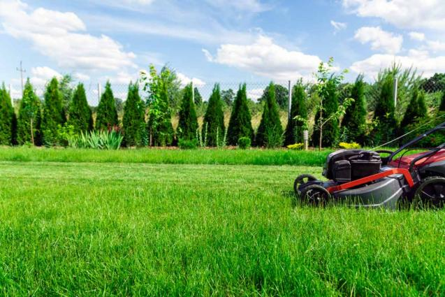 4 Tips to Get Your Yard, Garden and Driveway Ready for Winter