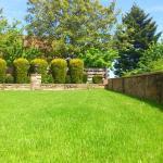 5 Summer Gardening To-Do's