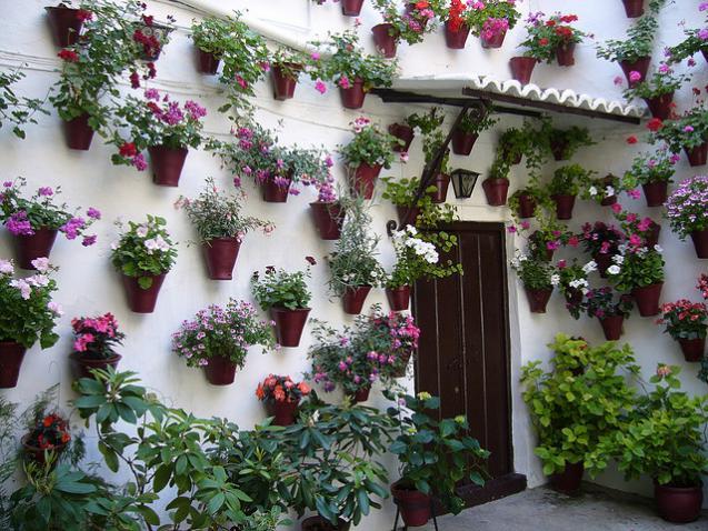 3 Big Makeover Ideas for Small Gardens