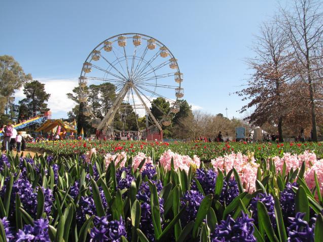 4 Spring Festivals Gardeners Shouldn't Miss