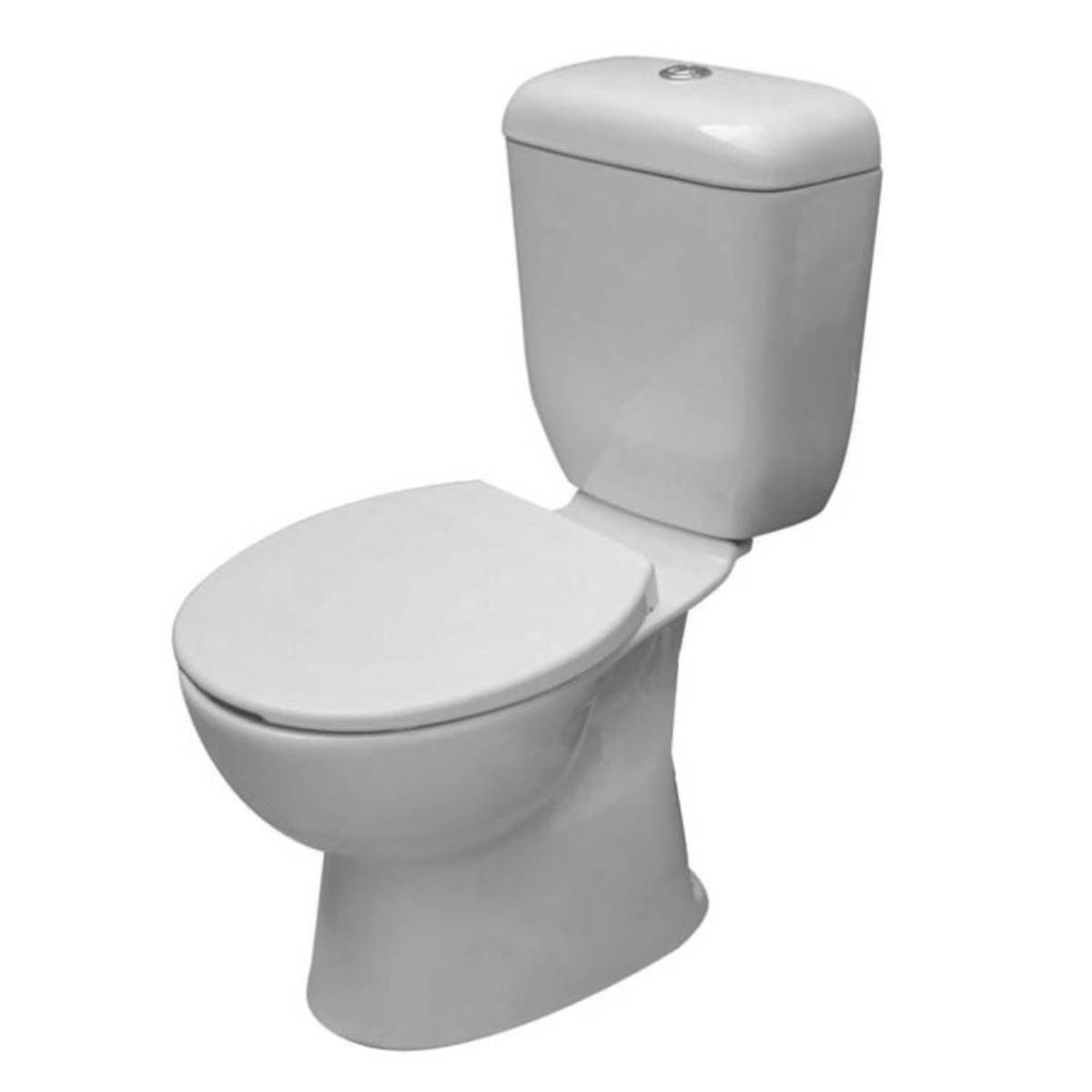 View Photo: BIRMINGHAM TOILET WITH HIGH LEVEL CISTERN