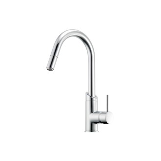 View Photo: Minimalist Gooseneck with Pull Out Spray Sink Mixer