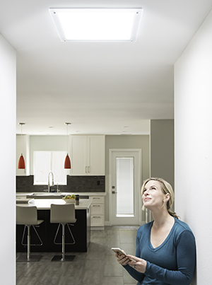 Read Article: The Benefits of Natural Light vs Artificial Lighting