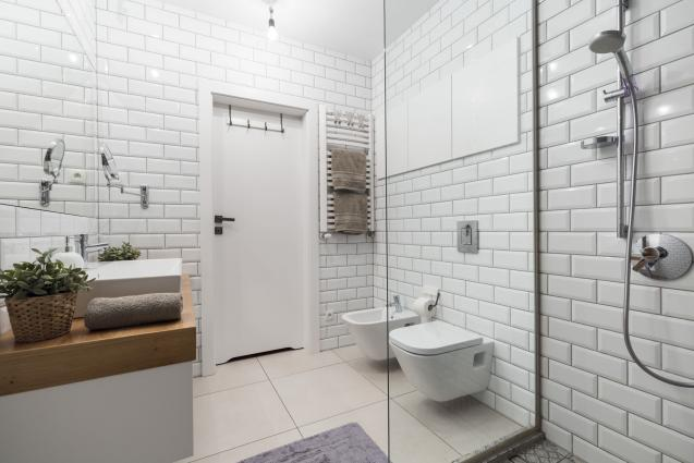 Read Article: Tips On Finding The Best Toilet For Your Home