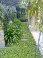 The Melville Gardener