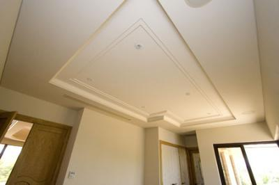 View Photo: Inset Ceiling