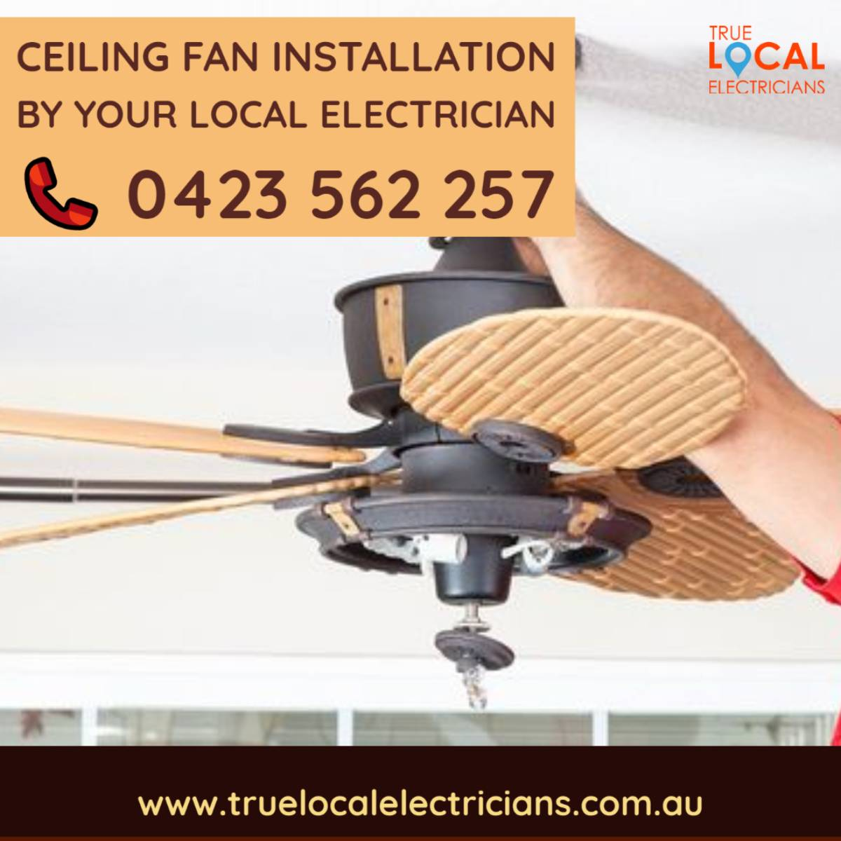 View Photo: Need a Ceiling Fan Installed or Replaced?