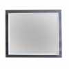ADP Frame Mirror