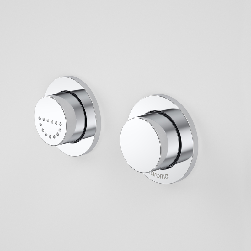View Photo: Caroma Invisi Series II Round Dual Flush Raised Care Remote Buttons (plastic)