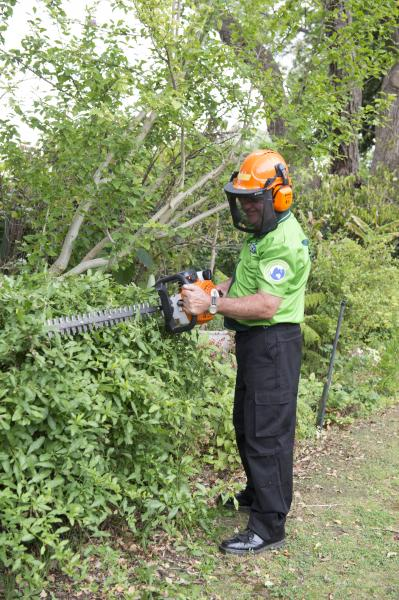 View Photo: Hedge trimmer