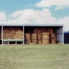 Rural Farm Shed